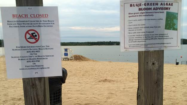 Swimming was prohibited at Lake Ronkonkoma beach due to increased bacteria levels, plus there was a blue-green algae bloom advisory in effect on Tuesday, June 30, 2015 (Long Island Press photo)